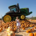 Kenna James Pumpkin Patch 1